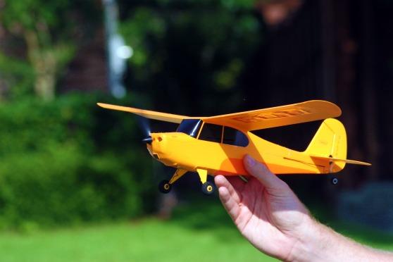 ChickandBee-miniplane3