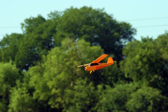 ChickandBee-miniplane5