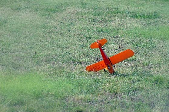 ChickandBee-miniplane6