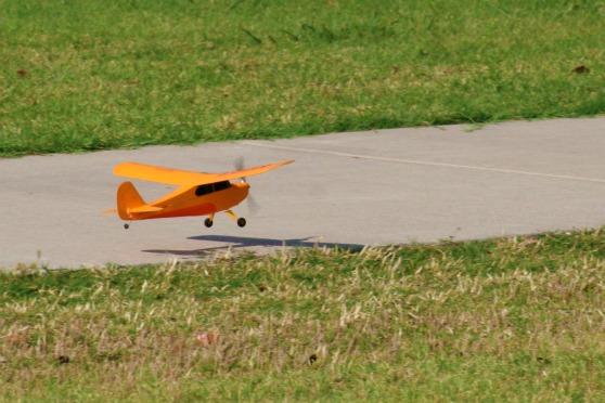 ChickandBee-miniplane7