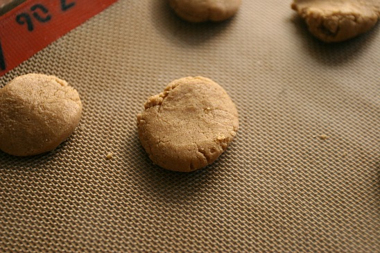 ChickandBee-molassescookies10